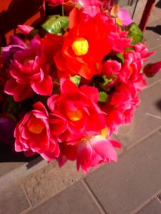 雍和宮前禮佛的假花